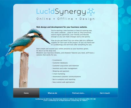 Lucid_synergy